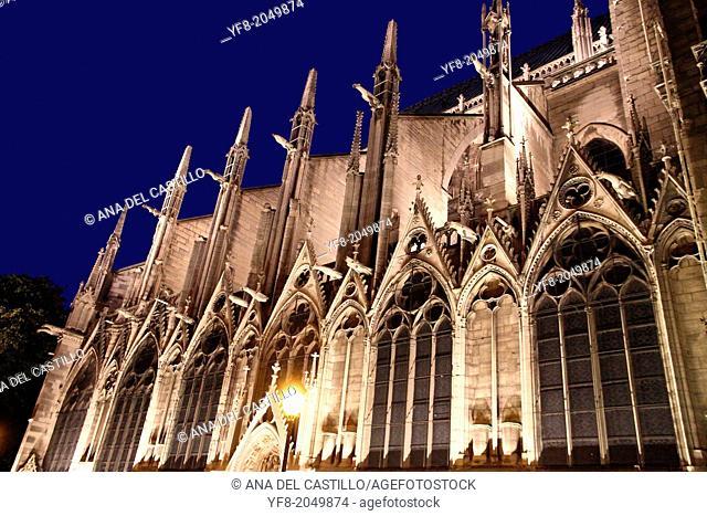 Notre Dame cathedral at dusk Paris France
