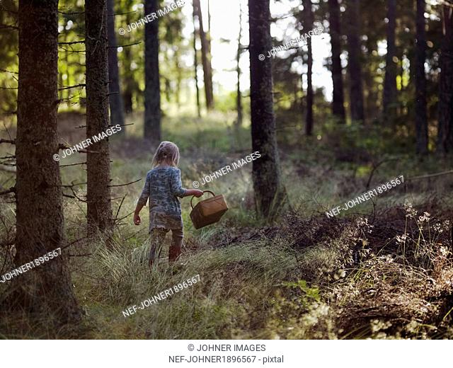 Girl in forest picking mushrooms