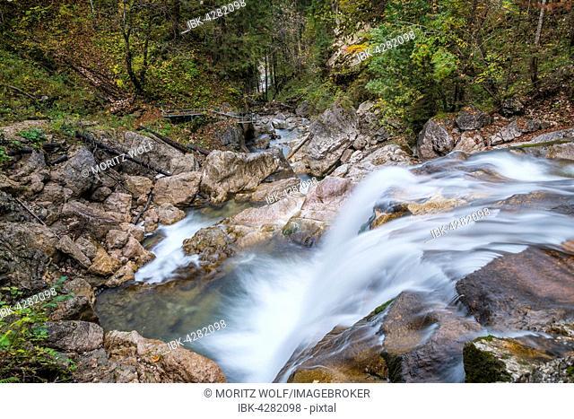 Wild stream in Pöllatschlucht, Schwangau, Ostallgaeu, Allgäu, Swabia, Bavaria, Germany