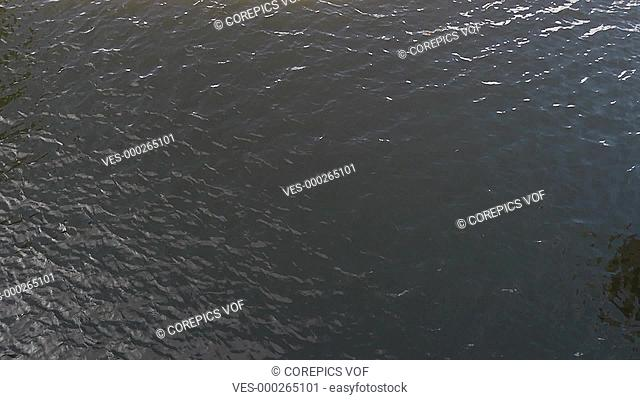 Slow motion of a coxed four rowing team passing diagonally underneath a bridge, seen from above