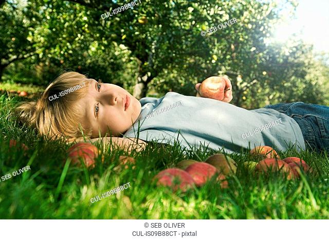 Boy lying daydreaming in apple orchard with fresh apples