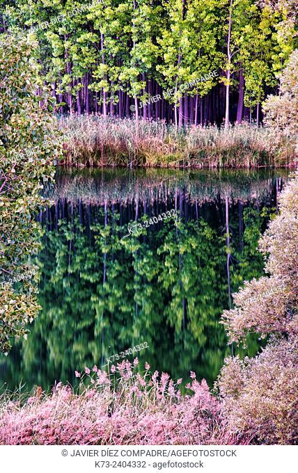 Laguna de Somolinos. Sierra de Pela y Laguna de Somolinos Natural Monument. Somolinos. Guadalajara Province. Castilla-La Mancha. Spain