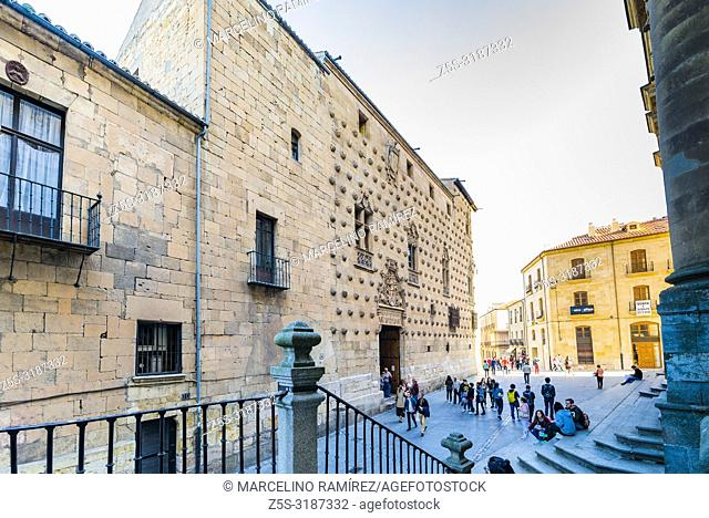 The Casa de las Conchas is a historical building in Salamanca. Its most peculiar feature is the façade, mixing late Gothic and Plateresque style