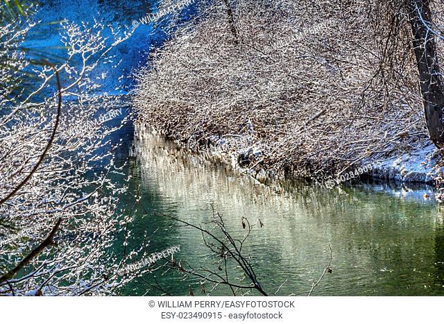Winter Leaves Snow Ice Wenatchee River Stevens Pass Leavenworth Washington