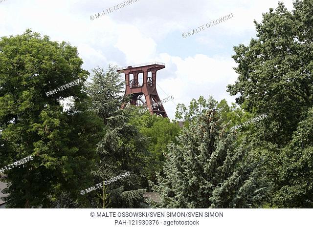 Feature, Symbolfoto, Randmotiv, The Foerderturm of the colliery Zollverein behind Baeumen,, AoWelterbe Zollverein, Ruhr conference, theme forum