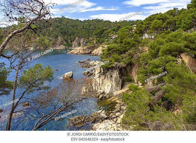 View of the cliffs of the coast of Calella de Palafurgell from the path that borders it, Costa Brava, Catalonia, Spain