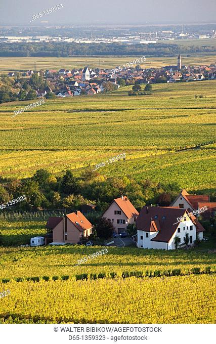 France, Haut-Rhin, Alsace Region, Alasatian Wine Route, Zellenberg, town and vineyards, autumn
