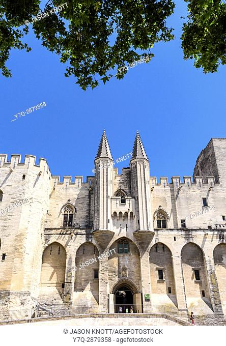 Tree framed Gothic twin towered facade of the Palais Neuf, Palais des Papes, Palace Square, Avignon, Vaucluse, Provence-Alpes-Cote d'Azur, France