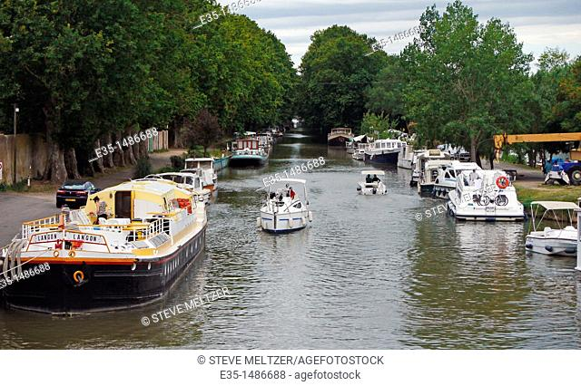 Boat traffic on France's Canal du Midi has been greatly reduced by a deadly 'canker stain' killing trees along its length