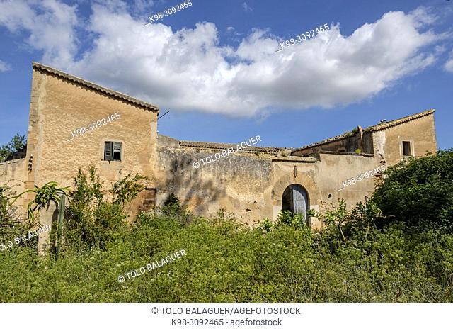 Son Flor, Palma, Mallorca, balearic islands, Spain