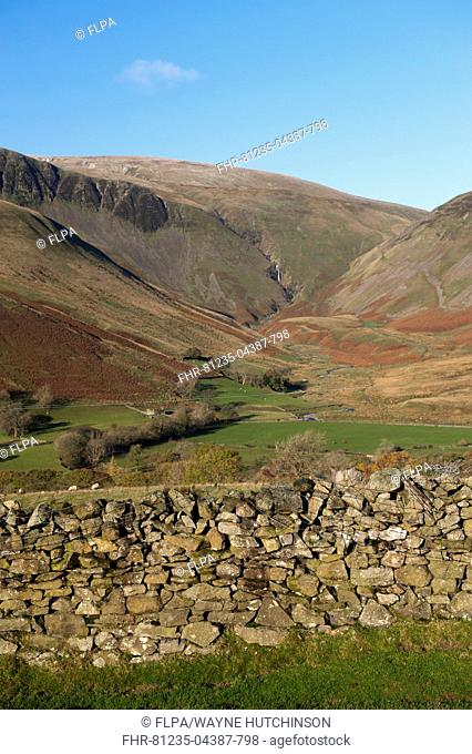 View of drystone wall and farmland in fell valley, with waterfall in distance, Cautley Crag and Yarlside with Cautley Spout inbetween, Sedbergh, Howgill Fells