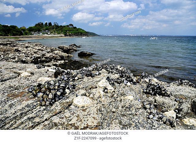 Lanscape beside Brest in Brittany, France