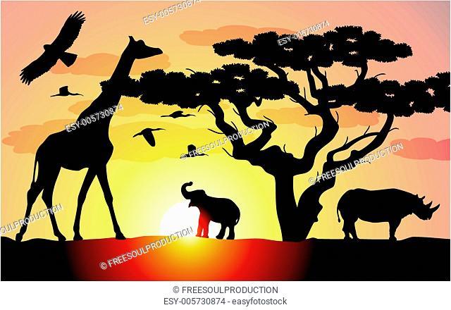 vector giraffe, rhinoceros and elephant in africa