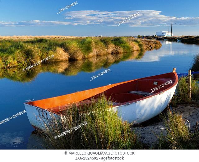 Main drainage channel of Encanyissada Lagoon at Gola Vella site. Ebro River Delta Natural Park, Tarragona province, Catalonia, Spain