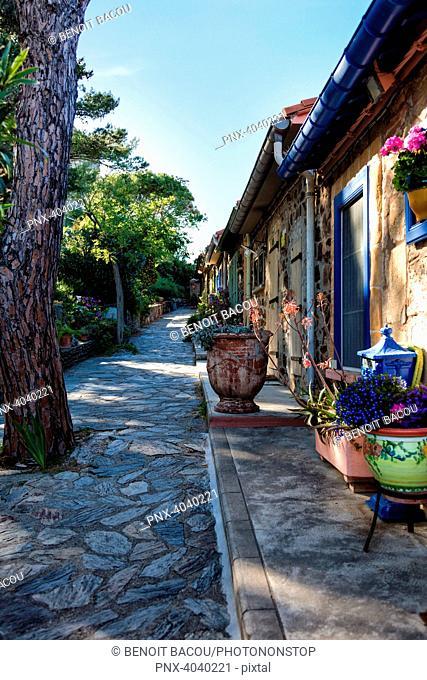 Houses of Collioure, Pyrenees-Orientales, Catalonia, Cote-de-Vermeille, Languedoc-Roussillon, France