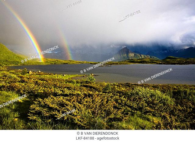 A double rainbow, two rainbows with rain showers and sunshine, Sandsletta, Austvagoya Island, Lofoten, Norway