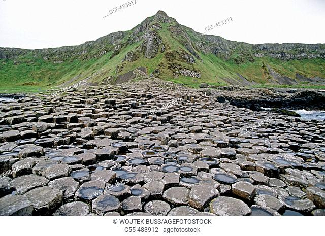 Giant's Causeway. Co. Antrim. North Ireland. Ireland
