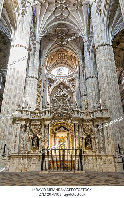 Trascoro de la Catedral Nueva de Salamanca. Ciudad Patrimonio de la Humanidad. Castilla León. España