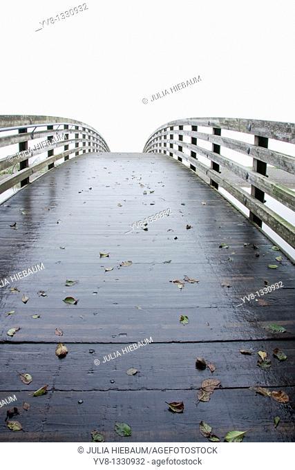 Wooden bridge with fallen autumn leaves