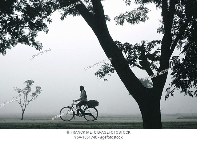 During a foggy morning, a man is riding a cycle. Teraï region, Nepal