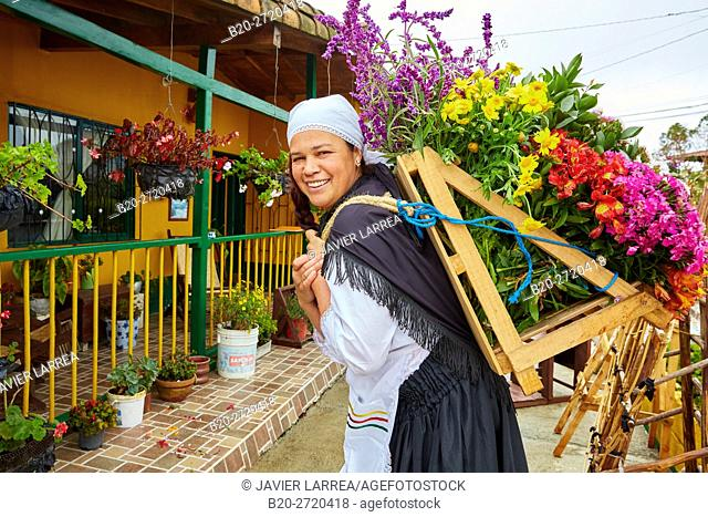 Chair flowers, Silleteros, Familia Londoño, Santa Elena, Medellin, Antioquia, Colombia, South America