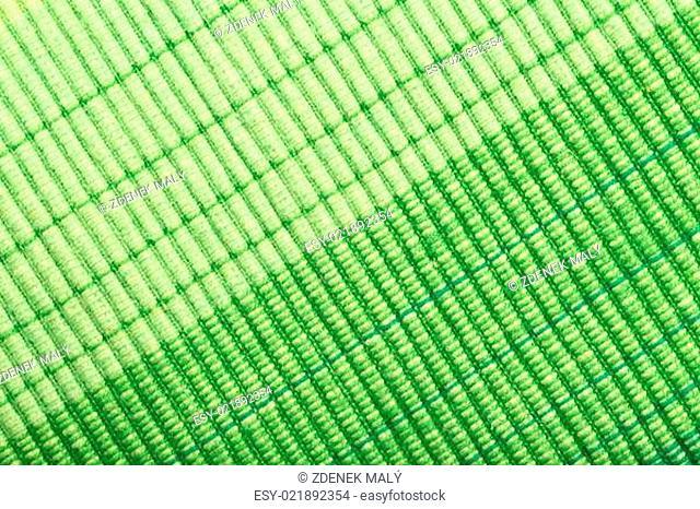 green stripe fabric texture