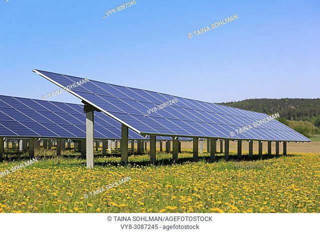 Solar panels on an open green field with yellow flowers and blue sky in the spring. Salo, Finland