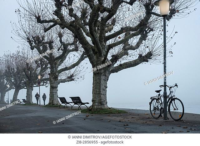 Banks of Lake Constance, Konstanz, Baden-Wurttemberg, Germany