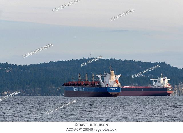 Pacific Basin Tanker ship taken from Pipers Lagoon, Nanaimo, BC Canada