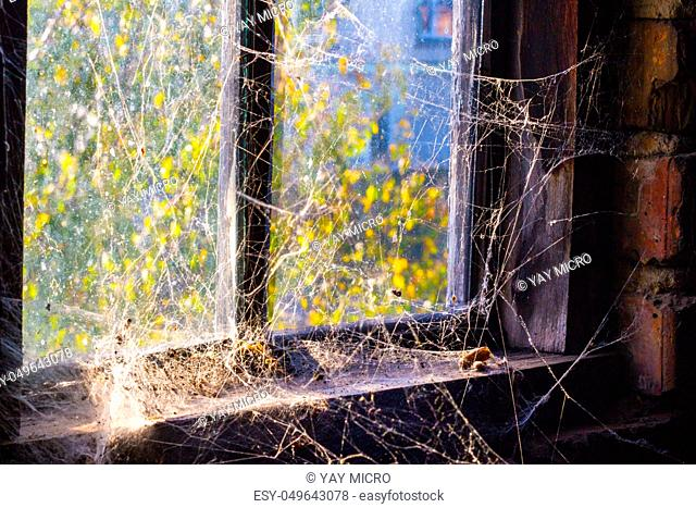Old window with cobweb and darkness inside