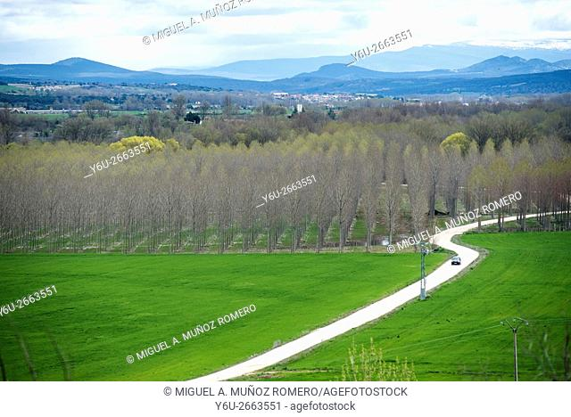 Landscape with road in Lerma, Burgos, Spain