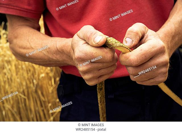 Close up of a thatcher holding a hazel wood spar