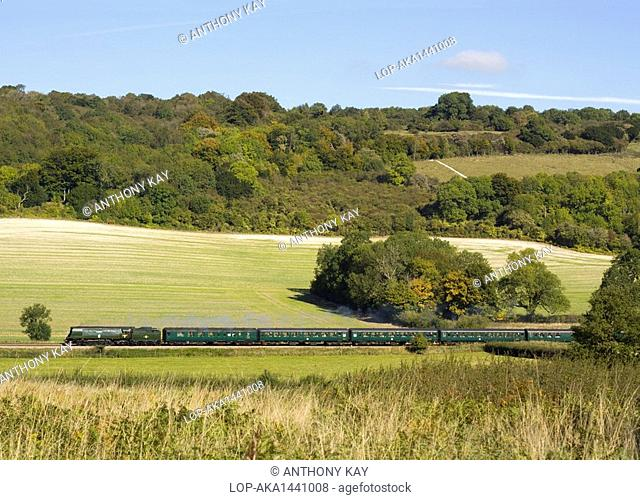 England, Surrey, Abinger Hammer. British Rail Battle of Britain class steam locomotive No. 34067 Tangmere working a steam charter over the Surrey Hills at...