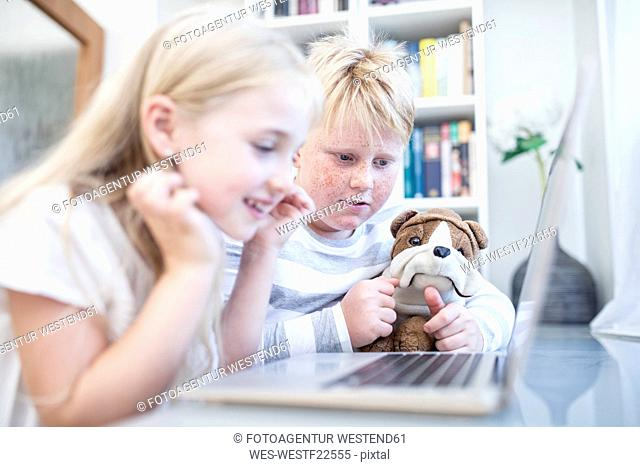 Brother and sister with cuddly toy using laptop together