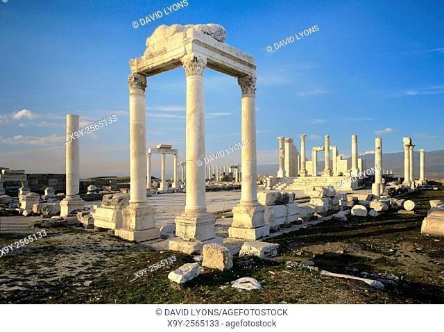Ruins of the Temple of Zeus in ancient Greek Roman city of Laodicea on the Lycos. Near modern town of Denizli, Turkey