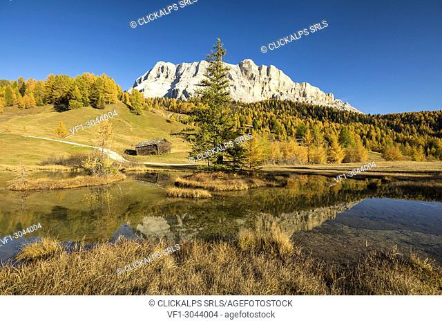 Armentara meadows. View towards Sas dla Crusc. Alta Badia, Alto Adige, italy