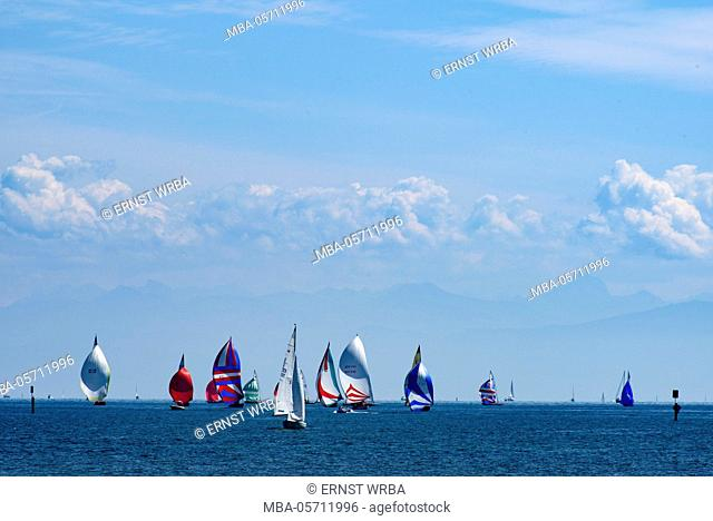 Sailboats on the lake, Constance, Lake of Constance, Baden-Wurttemberg, Germany