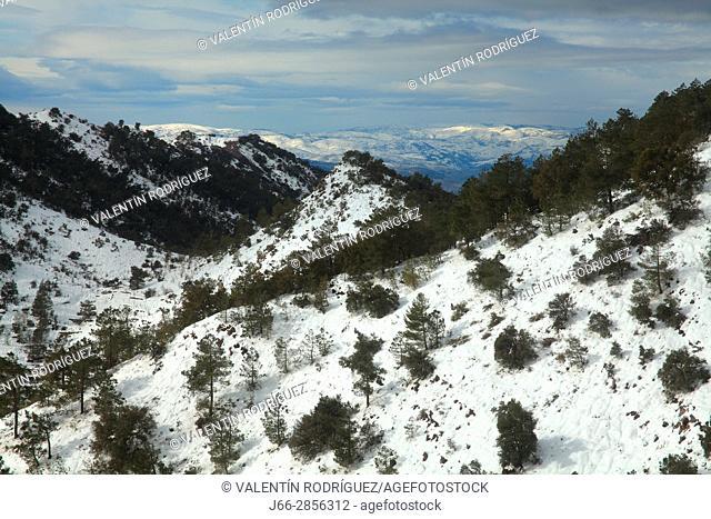 Winter landscape under the Espadán peak. Natural park Sierra Espadán. Castellón