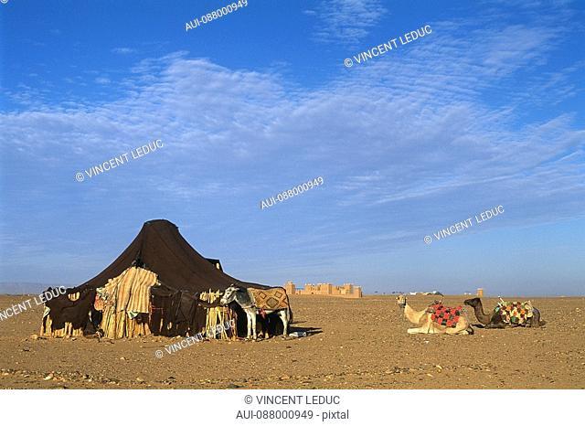 Morocco - South - Drâa Valley - Zagora - Tameagroute - Tinfou Dune