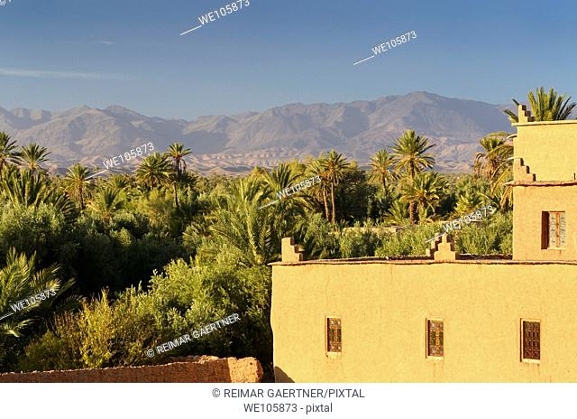 View of High Atlas mountains and the Skoura Palm tree oasis from Kasbah Ait Ben Moro Morocco