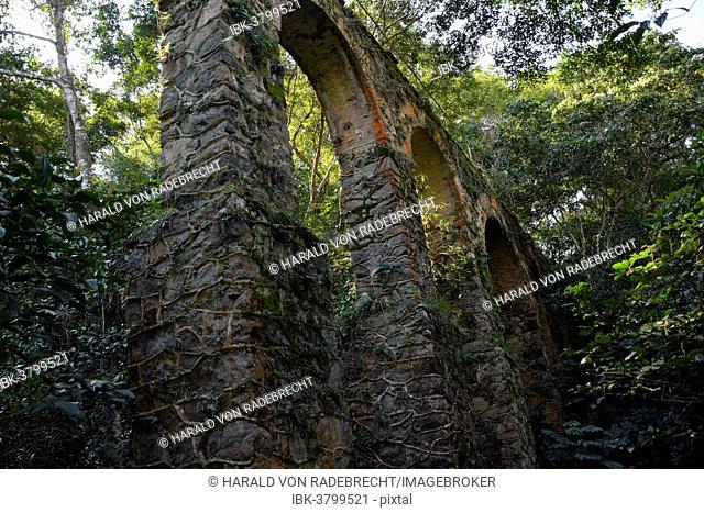 Aqueduct in the rainforest near Abrao, Ilha Grande, State of Rio de Janeiro, Brazil