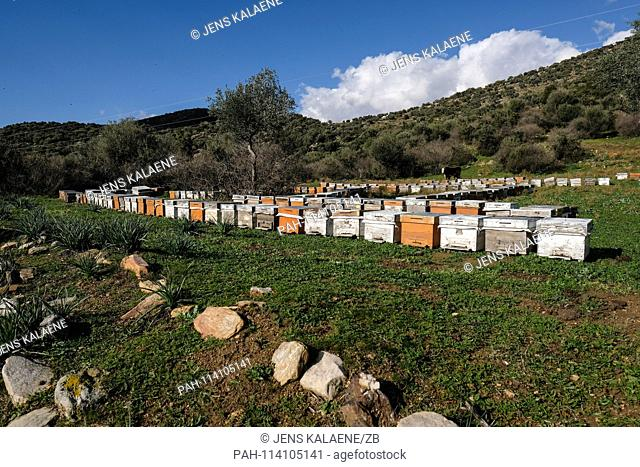 12.12.2018, Turkey, Didim: Bee boxes stand in the Bafasee Nature Park. The water is an inland lake formed on the western coast of Turkey from an earlier inlet