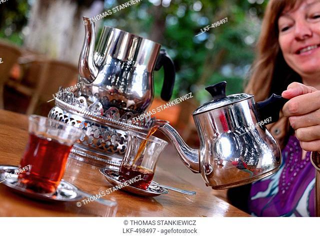 Tea garden in Rize near the Black Sea, East Turkey, Turkey