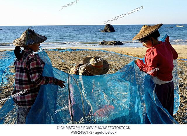 Myanmar, Rakhine State, Ngapali beach, Gyeik Taw village, Fisherwomen loading baskets of dried fish