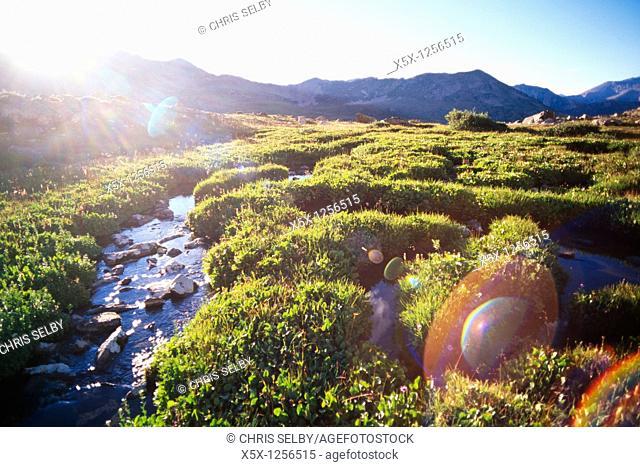 Sunflare from setting sun, Collegiate Peaks wilderness area, Colorado, USA