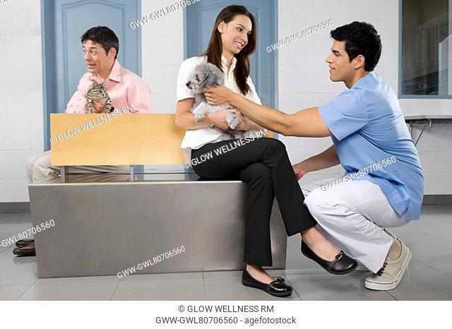 Pets with their owners in a veterinary hospital