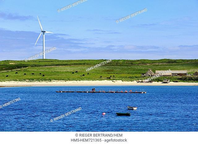 United Kingdom, Scotland, Orkney Islands, Isle of Burray, Weddell Bay and wind turbine