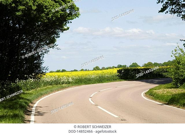 England, Suffolk, Lavenham, curving country road
