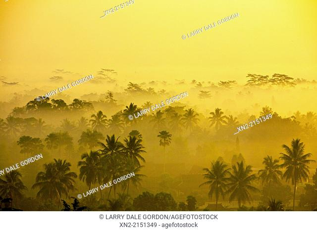 View at dawn of the mist-covered jungle of Kedu Plain from the top of the 9th-Century Mahyana Buddhist Temple at Borobudur, Magelang, Central Java, Indonesia