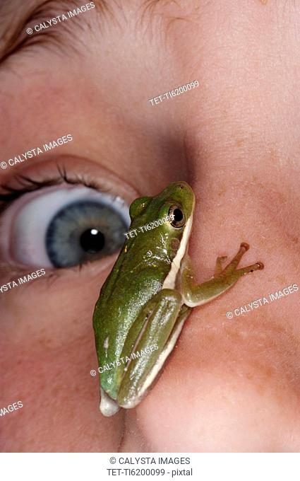 Green frog sitting on face of terrified girl 12-13